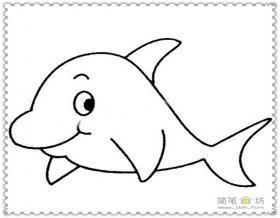 机灵的小海豚简笔画图片