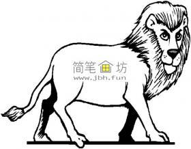 威武的狮子简笔画1幅