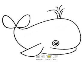 各种鲸鱼的简笔画画法及图片大全