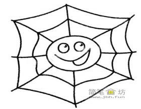 蜘蛛的简笔画画法教程及图片大全
