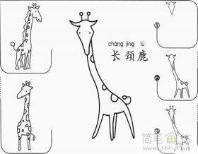 幼儿学画画教程:长颈鹿的简笔画画法