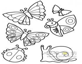 蝴蝶、瓢虫、蜗牛的简笔画图片素材