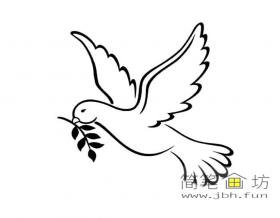 飞翔的和平鸽简笔画图片