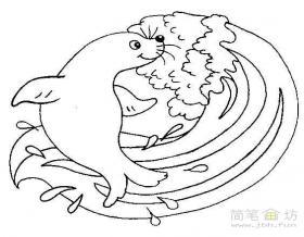 冲浪的海狮简笔画图片