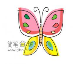 宝宝学画画:简单漂亮的花蝴蝶简笔画画法