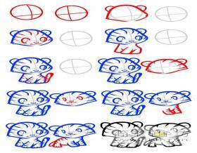 简笔画两只老虎的简笔画画法教程