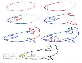 简笔画鲸鱼的画法步骤教程