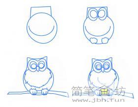 4个步骤学会猫头鹰简笔画画法