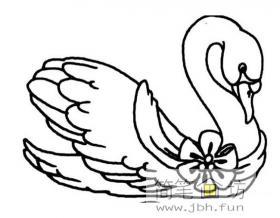 美丽的天鹅简笔画图片1幅