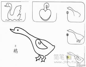 简单的鹅简笔画画法步骤教程
