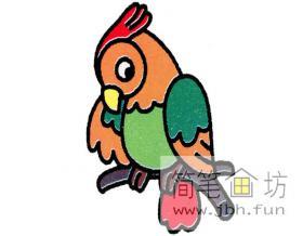 简笔画鹦鹉的绘画图片