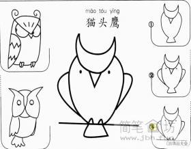 简单的猫头鹰简笔画教程