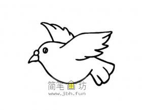 7幅鸽子的简笔画图片素材欣赏