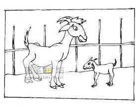 羊圈里的山羊简笔画图片