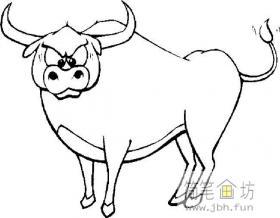气势汹汹的斗牛简笔画1幅