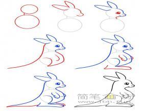 一步一步教你画袋鼠简笔画