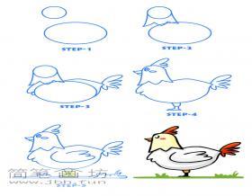 一步一步教你画大公鸡简笔画