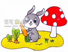 抱着萝卜的小兔子的简笔画绘画步骤