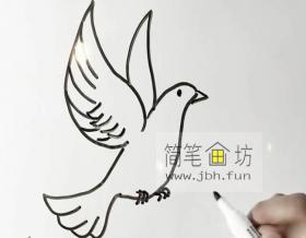 鸽子的简笔画详解