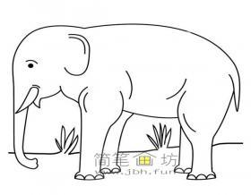 草地上的大象的简笔画图片
