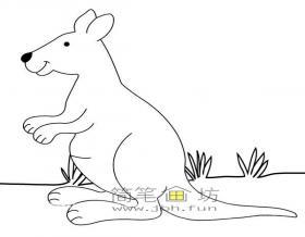 草地上的袋鼠的简笔画