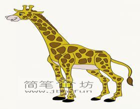 简单的长颈鹿简笔画图片【彩色】