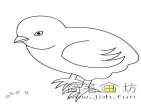 简单的小鸡吃米的简笔画图片