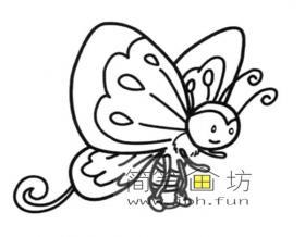 漂亮的花蝴蝶简笔画图片