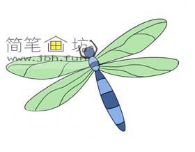 蜻蜓简笔画图片【彩色】