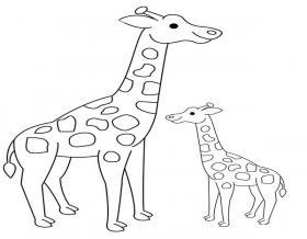 长颈鹿母子简笔画图片