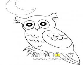 夜色中的猫头鹰简笔画图片