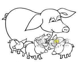 小猪一家简笔画图片