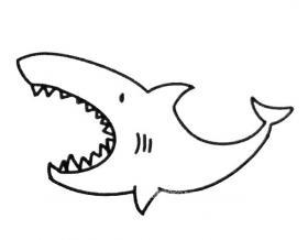 卡通鲨鱼简笔画图片
