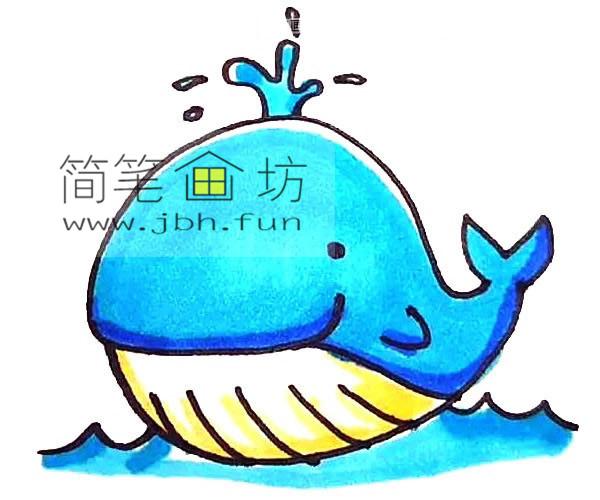 彩色可爱的鲸鱼的简笔画教程【彩色】(7)
