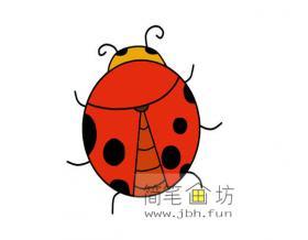 七星瓢虫的简笔画【彩色】