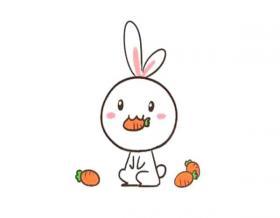 吃胡萝卜的可爱小兔子简笔画教程