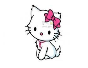 戴蝴蝶结的可爱的猫咪简笔画画法教程【彩色】