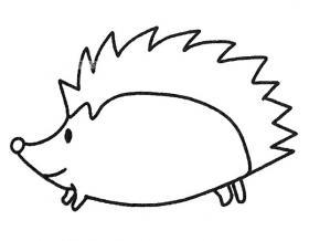 儿童刺猬简笔画画法步骤教程