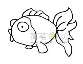 简单几步学会画好金鱼简笔画