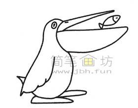 儿童简笔画:鹈鹕简笔画绘画步骤