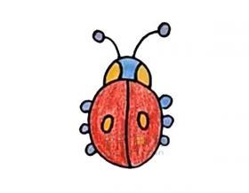 美丽的甲壳虫简笔画绘画步骤【彩色】