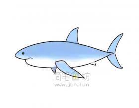 凶猛的大白鲨简笔画绘画步骤【彩色】