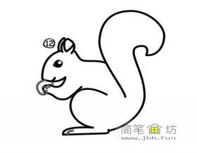 觅食的松鼠简笔画图片2幅