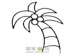 儿童简笔画椰树的画法及图片大全