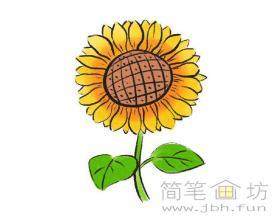 怎么画儿童画太阳花