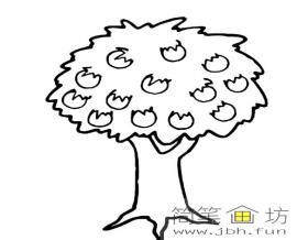 苹果树简笔画
