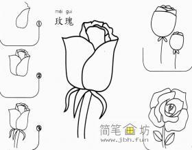 玫瑰的简笔画画法