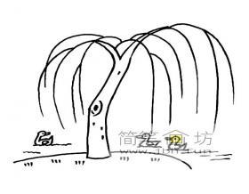 垂杨柳简笔画图片