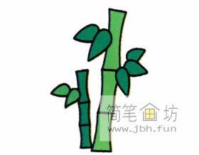 茁壮成长的小竹子的简笔画画法