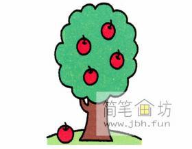 红苹果树的简笔画分解教程